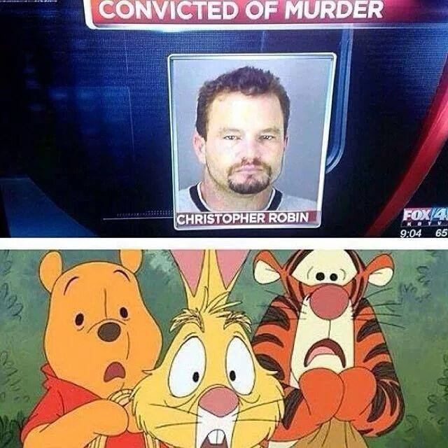 Not Disney's Christopher Robin!
