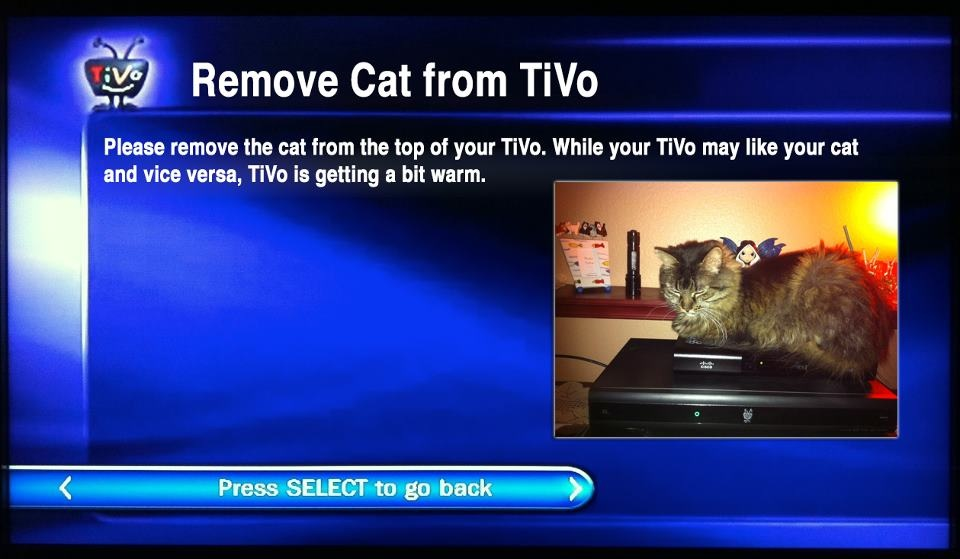 Remove Cat from TiVo