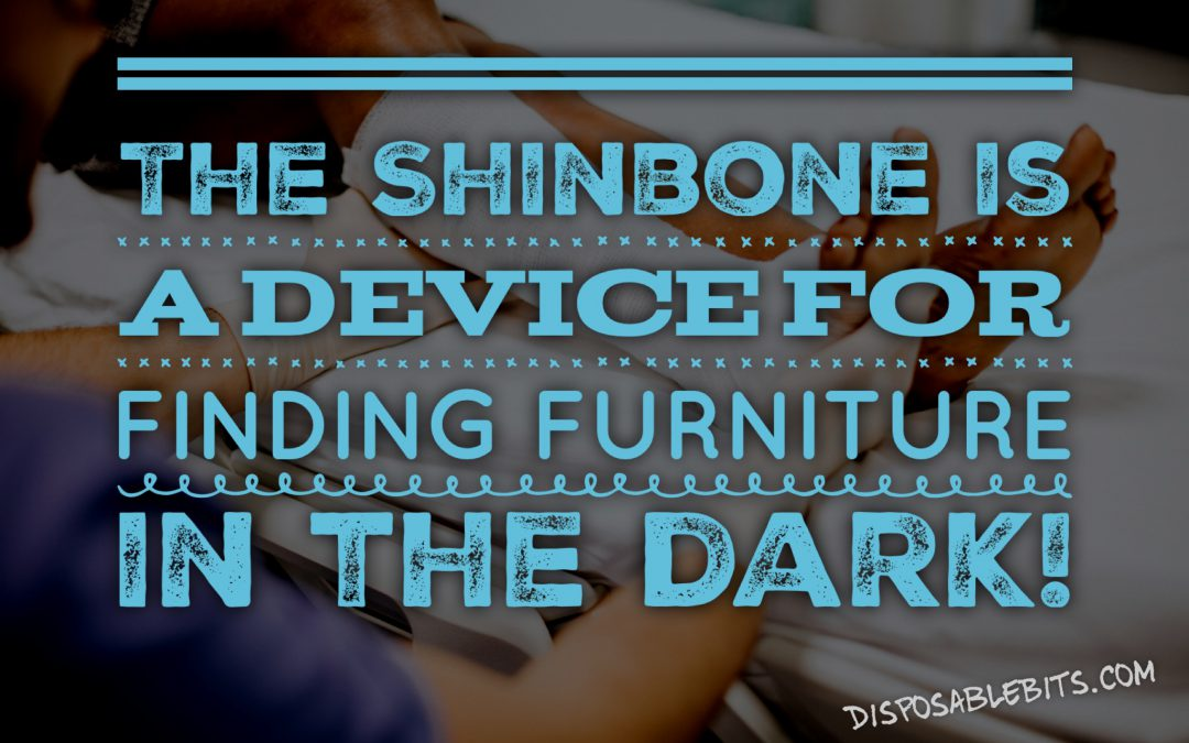 Shinbones
