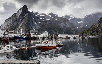 Norwegian Navel Fact #5726